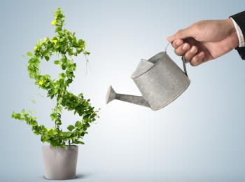 Особенности инвестиционных программ для физических лиц в Сбербанке России