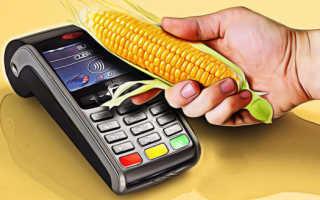 Отправка денежных средств с карточки Сбербанка на карту Кукуруза: варианты, комиссия