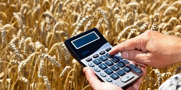 Какой процент кредита в Сбербанке для физических лиц