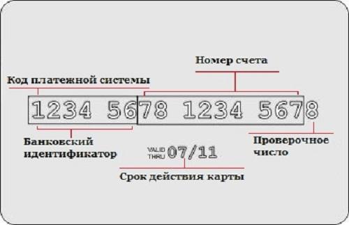 Сколько цифр в карте Сбербанка: правила расшифровки номера