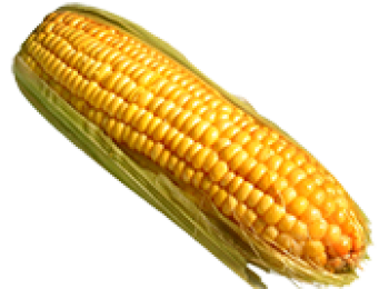 Кукуруза — бонусная карта от Евросети с кредитным лимитом